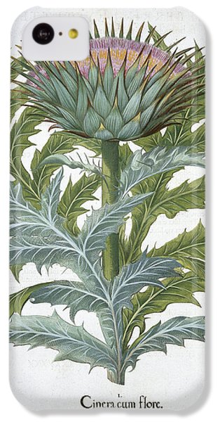 The Cardoon, From The Hortus IPhone 5c Case by German School