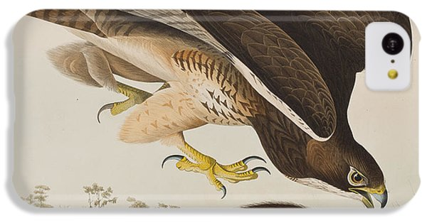 Buzzard iPhone 5c Case - The Common Buzzard by John James Audubon