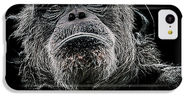 Chimpanzee iPhone 5c Case - The Dictator by Paul Neville