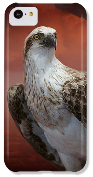 iPhone 5c Case - The Glory Of An Eagle by Holly Kempe
