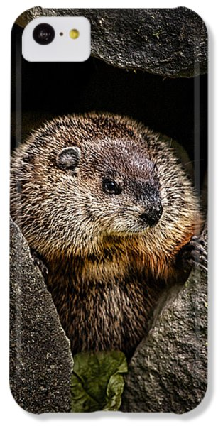 The Groundhog IPhone 5c Case
