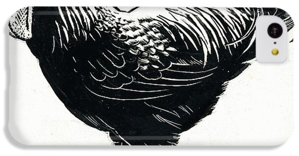 Rooster iPhone 5c Case - The Hen by George Adamson