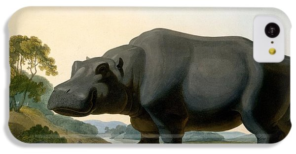 The Hippopotamus, 1804 IPhone 5c Case by Samuel Daniell