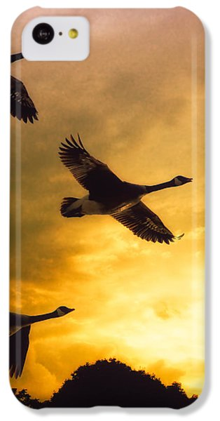 The Journey South IPhone 5c Case