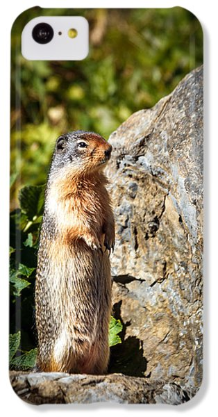 The Marmot IPhone 5c Case by Robert Bales