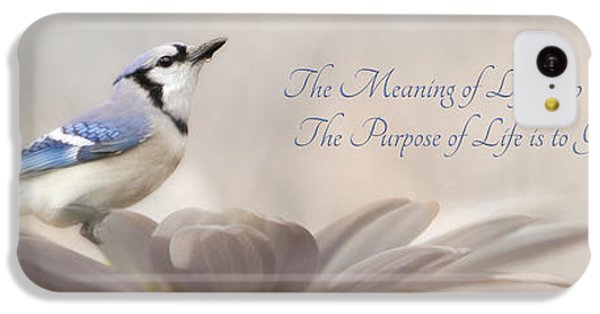 Bluejay iPhone 5c Case - The Meaning Of Life by Lori Deiter
