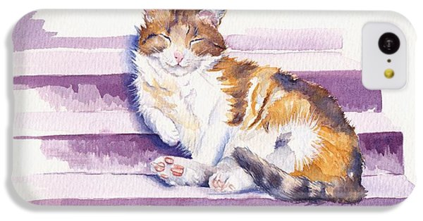 Cat iPhone 5c Case - The Naughty Step by Debra Hall