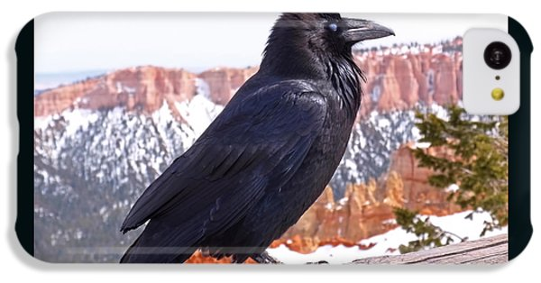 The Raven IPhone 5c Case