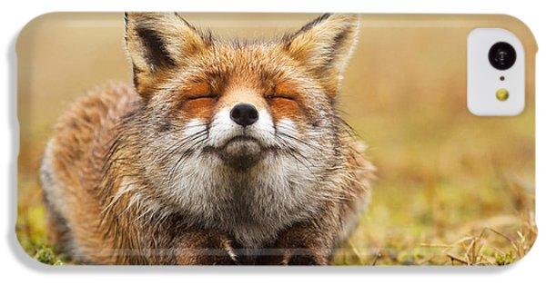 The Smiling Fox IPhone 5c Case