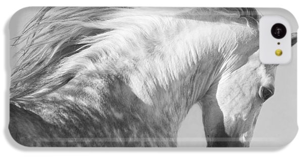 Horse iPhone 5c Case - The Spanish Stallion Tosses His Head by Carol Walker