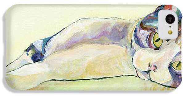 Cat iPhone 5c Case - The Sunbather by Pat Saunders-White