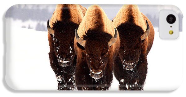 Three Amigos IPhone 5c Case by Steve Hinch