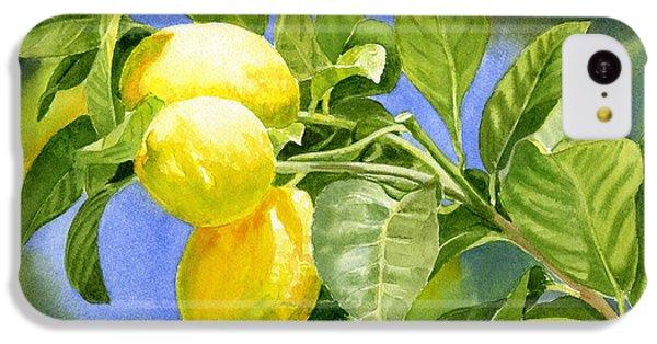 Three Lemons IPhone 5c Case by Sharon Freeman
