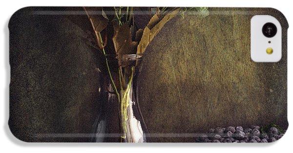 Fruit Bowl iPhone 5c Case - Through The Window by Farid Kazamil