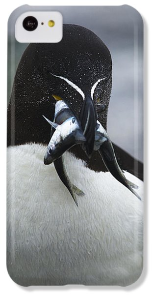 Feeding Time... IPhone 5c Case