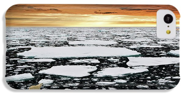 Polar Bear iPhone 5c Case - Towards An Uncertain Future... by Marco Gaiotti
