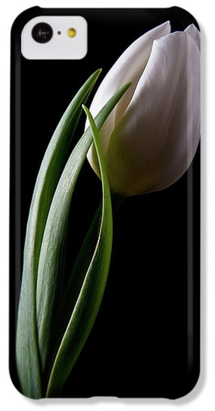 Tulip iPhone 5c Case - Tulips IIi by Tom Mc Nemar