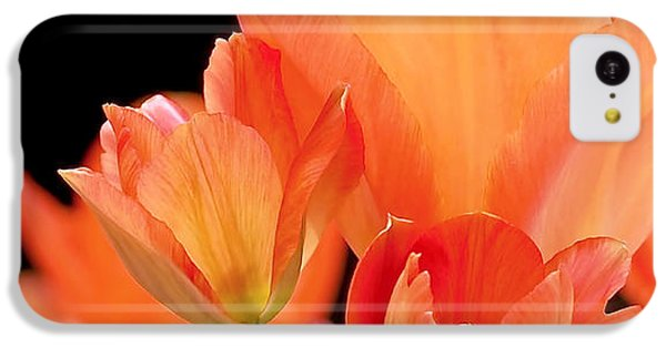 Tulips In Shades Of Orange IPhone 5c Case by Rona Black