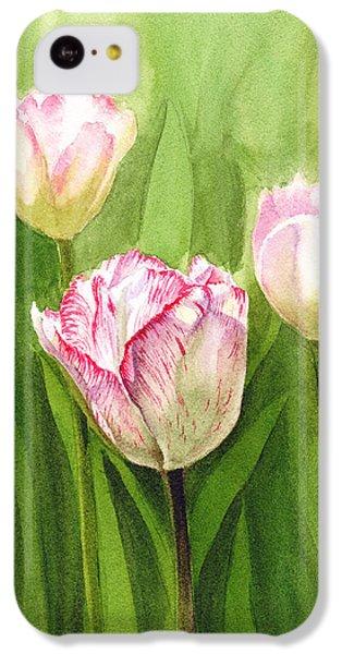 Tulips In The Fog IPhone 5c Case