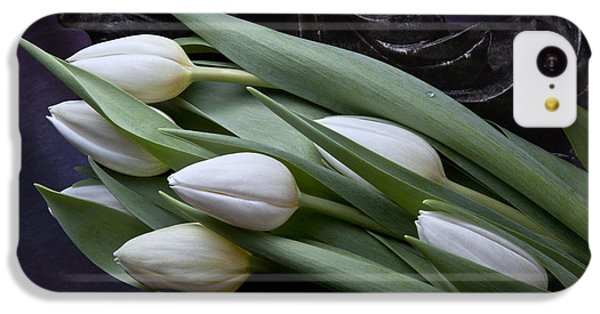 Tulip iPhone 5c Case - Tulips Laying In Wait by Tom Mc Nemar
