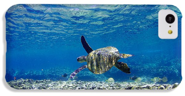 Turtle iPhone 5c Case - Turtle Cruise by Sean Davey