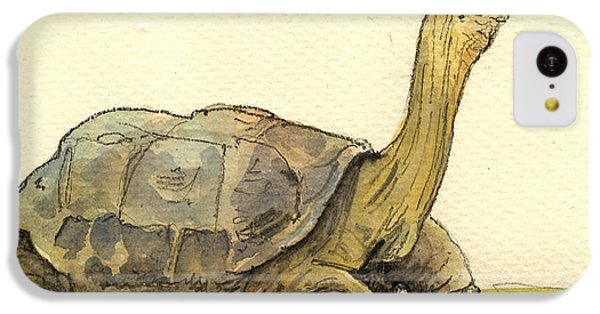 Turtle Galapagos IPhone 5c Case by Juan  Bosco