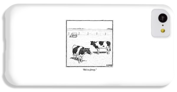 Two Averagely Spotted Cows Looking At A Plain Cow IPhone 5c Case