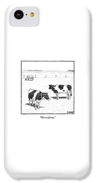 Rural Scenes iPhone 5c Case - Two Spotted Cows Looking At A Jersey Cow by Matthew Diffee