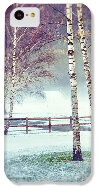 Two Birches IPhone 5c Case by Silvia Ganora