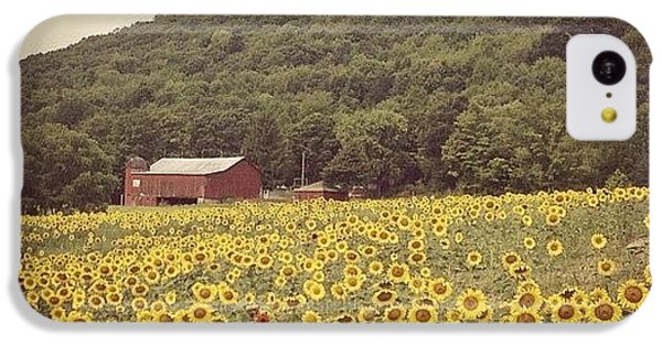 Sky iPhone 5c Case - Upstate by Mike Maher