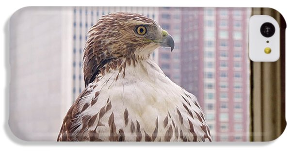 Urban Red-tailed Hawk IPhone 5c Case