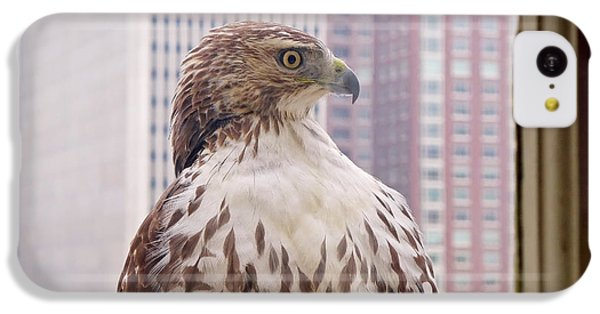 Urban Red-tailed Hawk IPhone 5c Case by Rona Black