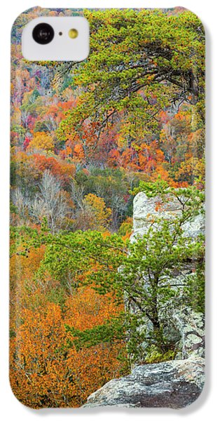 Buzzard iPhone 5c Case - Usa, Tennessee, Fall Creek Falls State by Jaynes Gallery