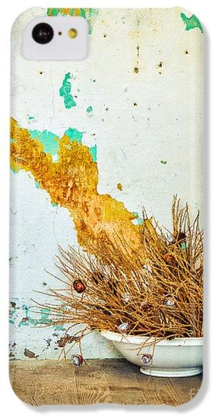 Vase On Wooden Floor IPhone 5c Case by Silvia Ganora