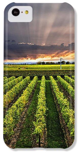 Vineyard At Sunset IPhone 5c Case