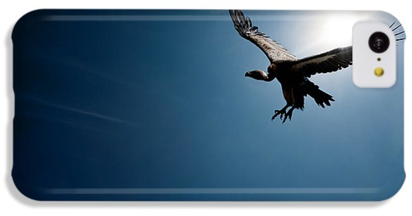 Vulture Flying In Front Of The Sun IPhone 5c Case