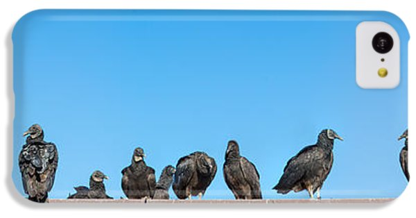Anhinga iPhone 5c Case - Vultures On Anhinga Trail, Everglades by Panoramic Images