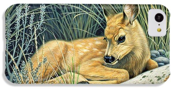 Deer iPhone 5c Case - Waiting For Mom-mule Deer Fawn by Paul Krapf