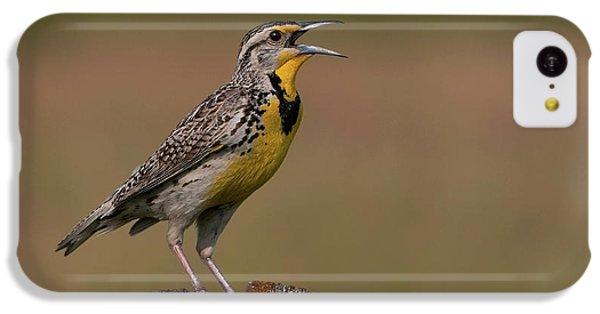 Western Meadowlark.. IPhone 5c Case by Nina Stavlund
