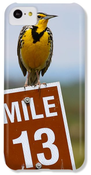 Western Meadowlark On The Mile 13 Sign IPhone 5c Case