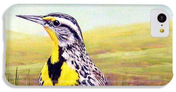 Western Meadowlark IPhone 5c Case