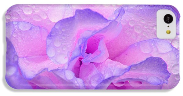 Wet Rose In Pink And Violet IPhone 5c Case by Nareeta Martin