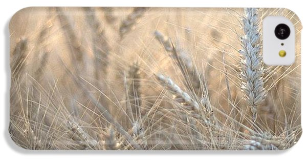 Beautiful iPhone 5c Case - #wheat #france #rsa_ladies #rsa_nature by Georgia Fowler