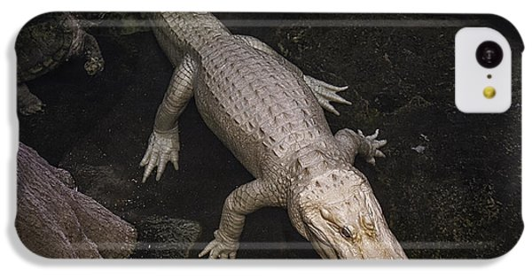 White Alligator IPhone 5c Case