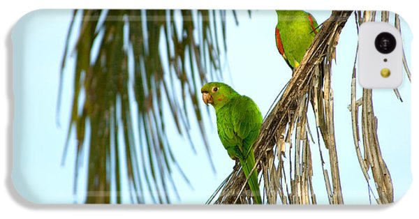 White-eyed Parakeets, Brazil IPhone 5c Case by Gregory G. Dimijian, M.D.