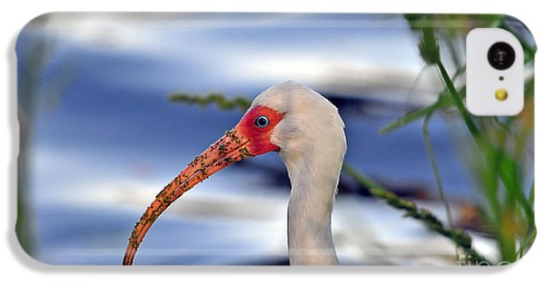 Intriguing Ibis IPhone 5c Case by Al Powell Photography USA
