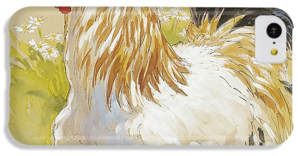 Rooster iPhone 5c Case - White Rooster by Tracie Thompson