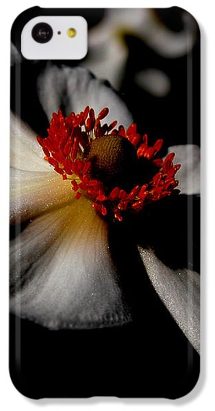 iPhone 5c Case - White Spring by Orphelia Aristal