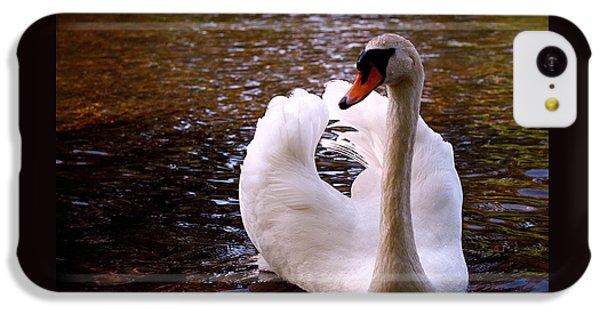 White Swan IPhone 5c Case