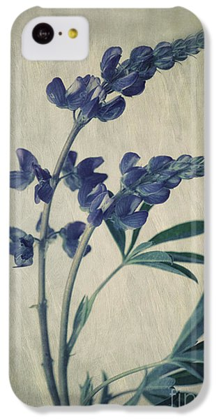 Portraits iPhone 5c Case - Wild Lupine by Priska Wettstein